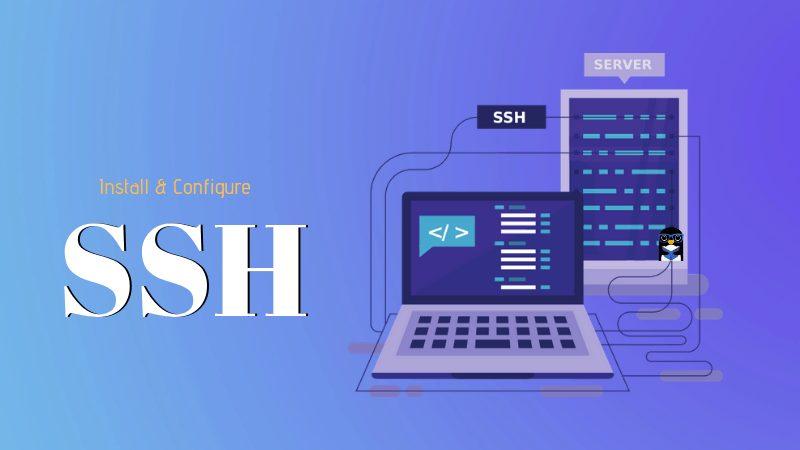 Perintah Dasar Linux di SSH untuk membuat website di VPS